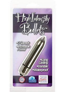 High Intensity Bullet Waterproof Silver