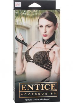 Entice Posture Collar With Leash Black Adjustable