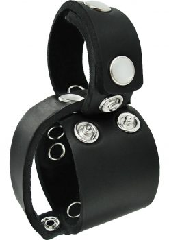 Master Series Ball Stretcher Divider Removable Cock Ring
