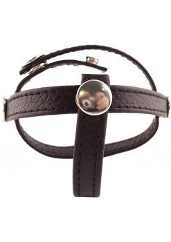 Rouge Three Piece Divider Adjustable Snap Leather Black